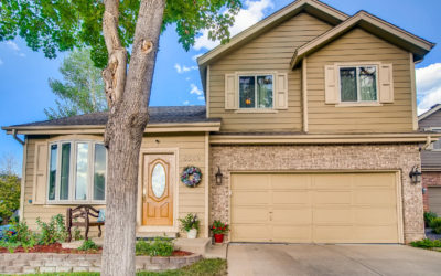Sold: Home offering the best of indoor/outdoor living in Highlands Ranch.